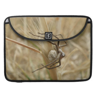 Spider and Egg Sac MacBook Pro Sleeve