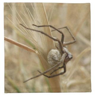 Spider and Egg Sac Napkin