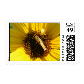 Spider and Moth Postage Stamp