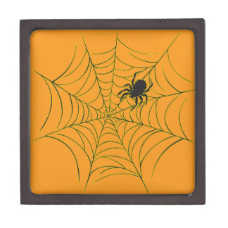 Spider and Web Jewelry Box