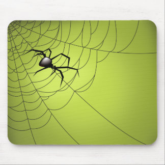 Spider and Web Mousepad
