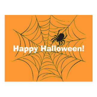 Spider and Web Postcard
