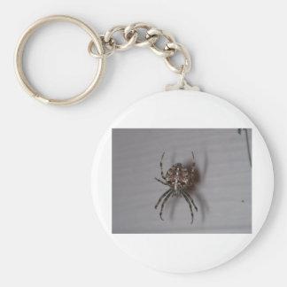 spider basic round button keychain