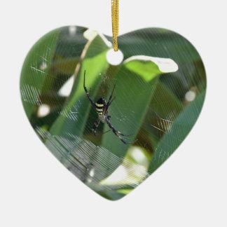 SPIDER BLACK & YELLOW RURAL AUSTRALIA CERAMIC ORNAMENT