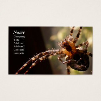 Spider - Business Cards