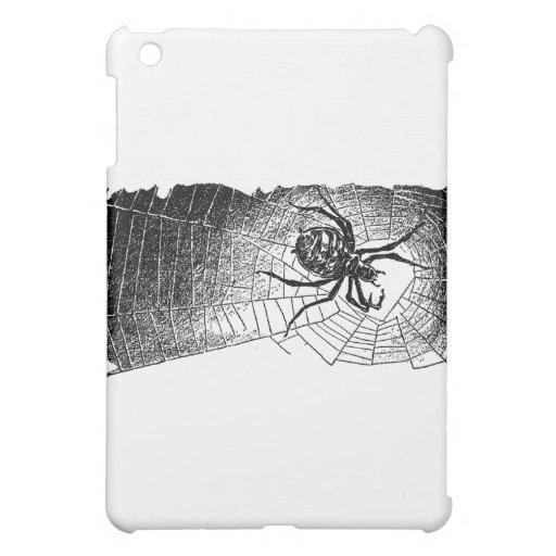 spider-clip-art-6
