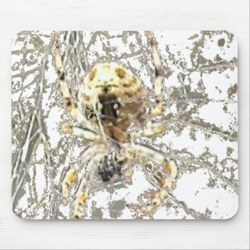 Spider Closeup Mystic Web Mouse Pad
