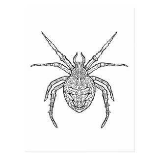 Spider - Complicated Coloring Postcard