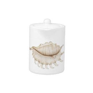 Spider Conch Sea Shell in Coloured Pencil Teapot