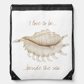 Spider Conch Sea Shell in Pencil Drawstring Bag