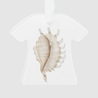 Spider Conch Shell T Shirt Decoration/Ornament Ornament