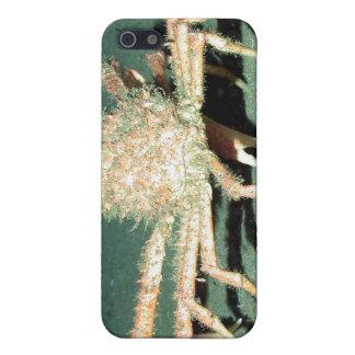 Spider Crab Case For iPhone SE/5/5s