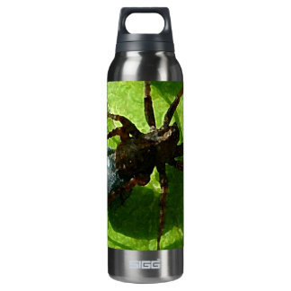 Spider Crawling on Leaf 16 Oz Insulated SIGG Thermos Water Bottle