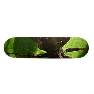 Spider Crawling on Leaf Skate Deck