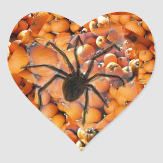 Spider crawling on the pumpkins. heart sticker