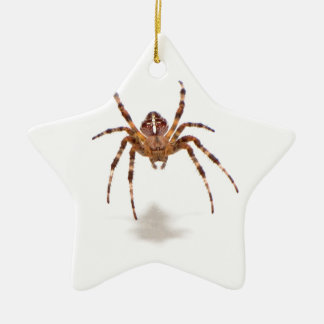 Spider Double-Sided Star Ceramic Christmas Ornament