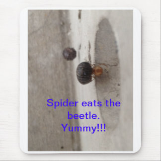 Spider eats the beetle mouse pad