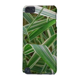 Spider grass pretty green and white striped plant iPod touch (5th generation) cover