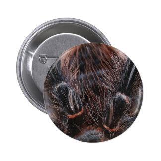 spider hair 2 inch round button