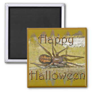 Spider Halloween Holiday Coordinating Items 2 Inch Square Magnet