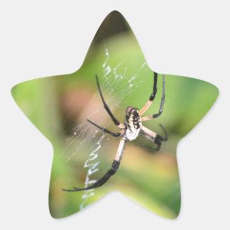 Spider in 3D Star Sticker
