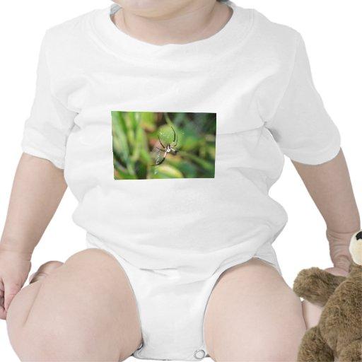 Spider in 3D Tshirts