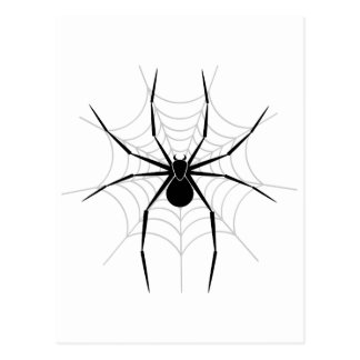 Spider in a Web Postcard
