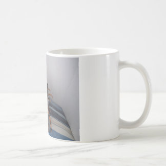Spider in gift box coffee mug