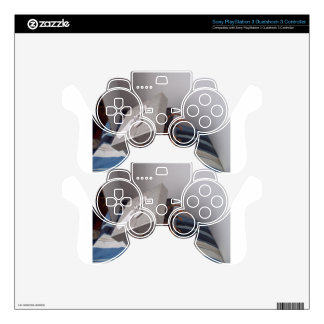 Spider in gift box PS3 controller skins