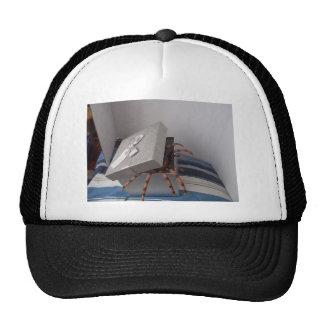 Spider in gift box trucker hat