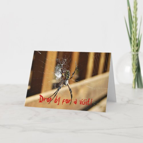 Spider in its Web -- Drop by for a visit! Card