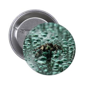 Spider in the Rain Button
