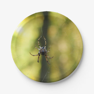 Spider in the Woods 7 Inch Paper Plate