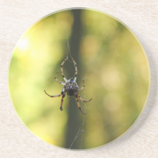 Spider in the Woods Beverage Coasters