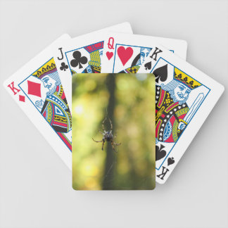 Spider in the Woods Bicycle Playing Cards