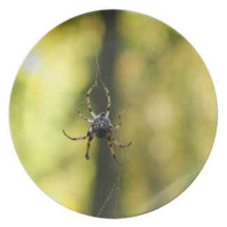Spider in the Woods Dinner Plate