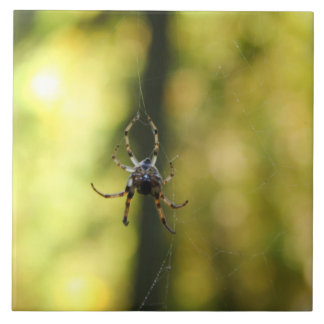 Spider in the Woods Large Square Tile