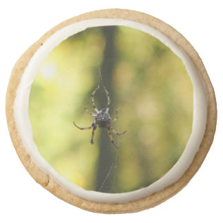 Spider in the Woods Round Premium Shortbread Cookie