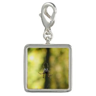 Spider in the Woods Photo Charm