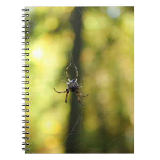 Spider in the Woods Spiral Note Book