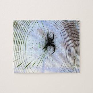 Spider in Web Puzzle