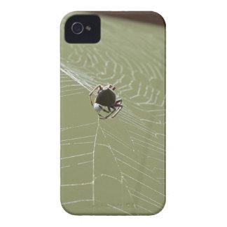 SPIDER IN WEB RURAL QUEENSLAND AUSTRALIA Case-Mate iPhone 4 CASE
