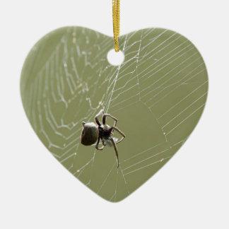 SPIDER IN WEB RURAL QUEENSLAND AUSTRALIA CERAMIC ORNAMENT
