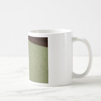 SPIDER IN WEB RURAL QUEENSLAND AUSTRALIA COFFEE MUG