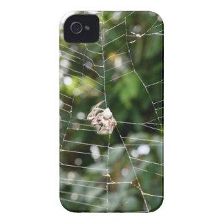 SPIDER IN WEB RURAL QUEENSLAND AUSTRALIA iPhone 4 Case-Mate CASE