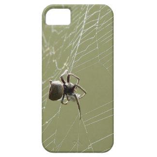 SPIDER IN WEB RURAL QUEENSLAND AUSTRALIA iPhone SE/5/5s CASE