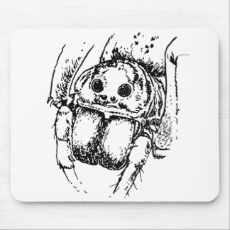 Spider Insect Illustration Mousepads