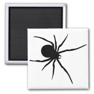 Spider Insects Spiders Arachnida Black Art Animal Fridge Magnets
