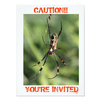Spider invitation