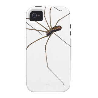 spider iPhone 4 cover